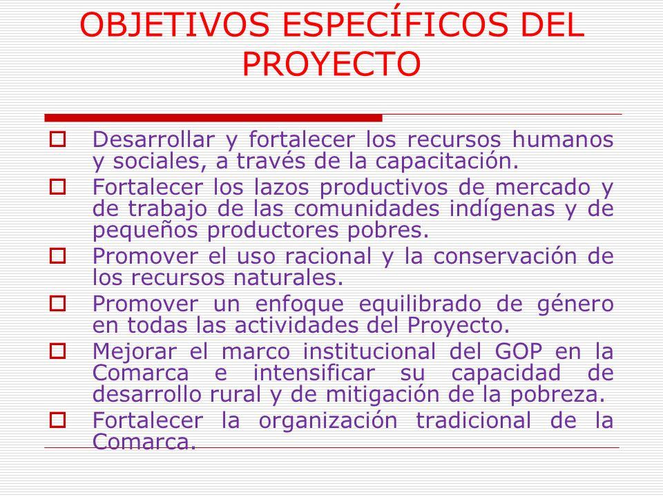 OBJETIVOS ESPECÍFICOS DEL PROYECTO Desarrollar y fortalecer los recursos humanos y sociales, a través de la capacitación. Fortalecer los lazos product
