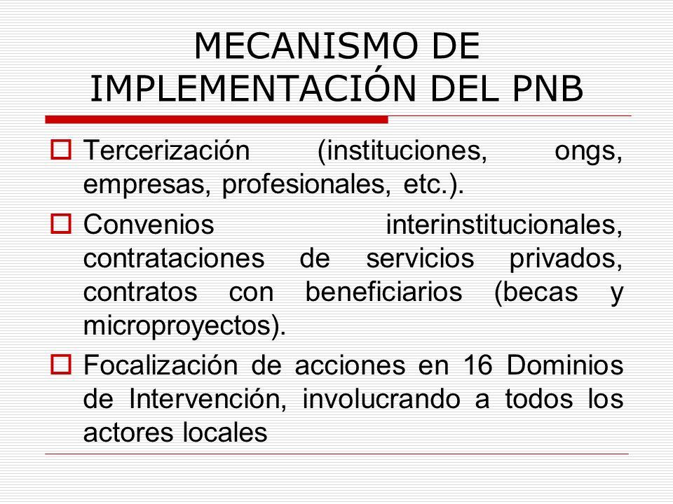 MECANISMO DE IMPLEMENTACIÓN DEL PNB Tercerización (instituciones, ongs, empresas, profesionales, etc.). Convenios interinstitucionales, contrataciones