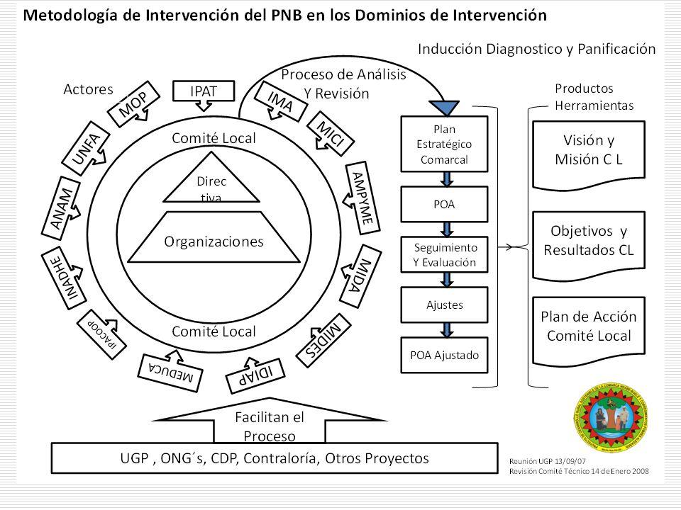 Tema central: Financiamiento, Producción y comercialización exitosa de Granos Básicos Experiencia de Economía Local en Cerro Tula
