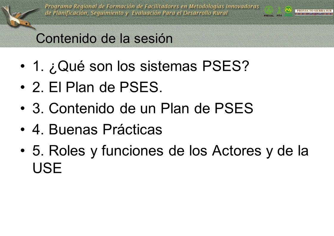 Contenido de la sesión 1. ¿Qué son los sistemas PSES? 2. El Plan de PSES. 3. Contenido de un Plan de PSES 4. Buenas Prácticas 5. Roles y funciones de