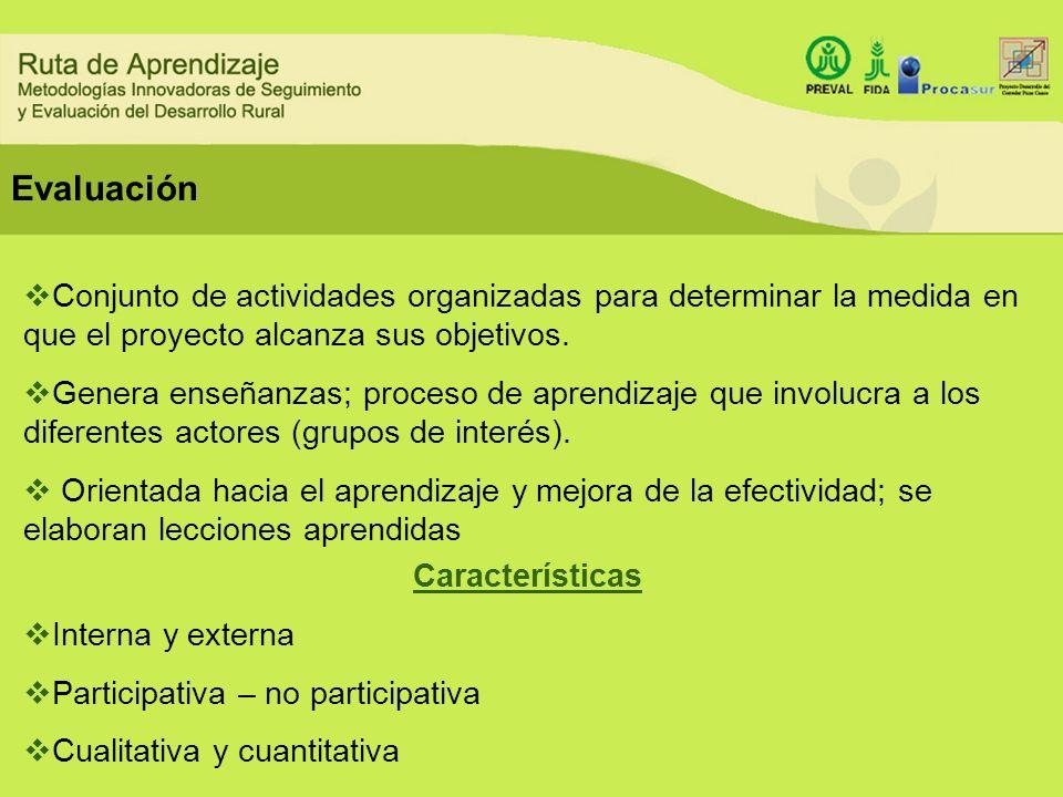 Conjunto de actividades organizadas para determinar la medida en que el proyecto alcanza sus objetivos. Genera enseñanzas; proceso de aprendizaje que
