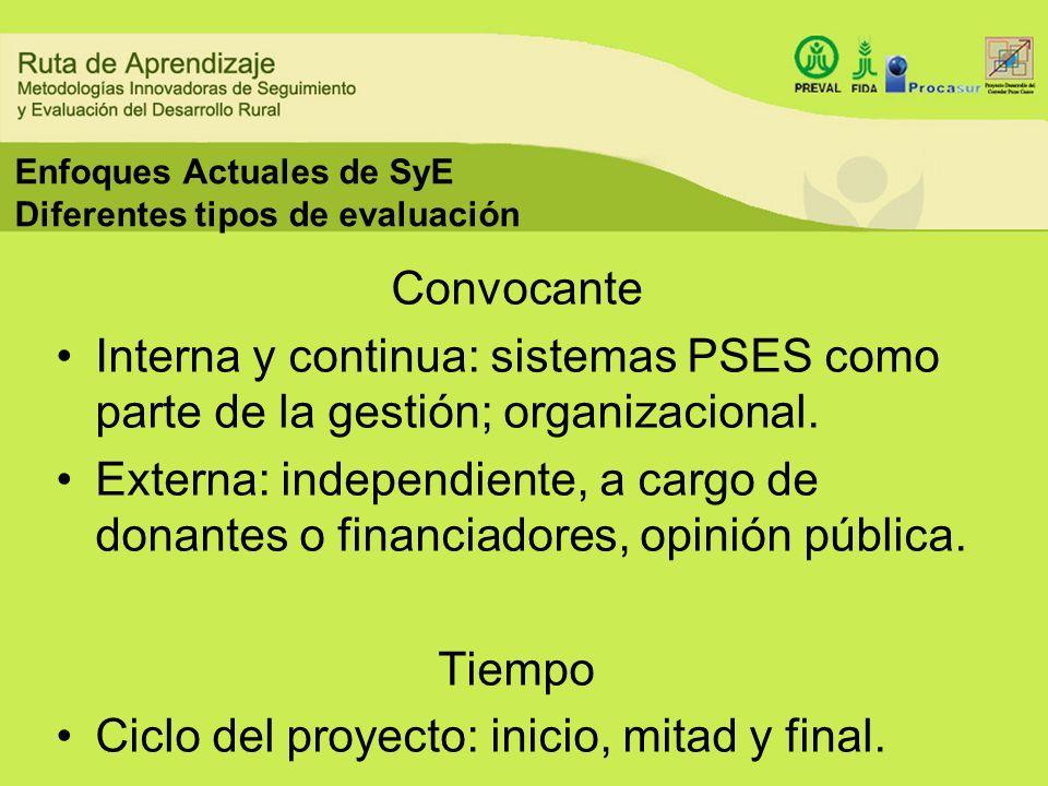 Enfoques Actuales de SyE Diferentes tipos de evaluación Convocante Interna y continua: sistemas PSES como parte de la gestión; organizacional. Externa
