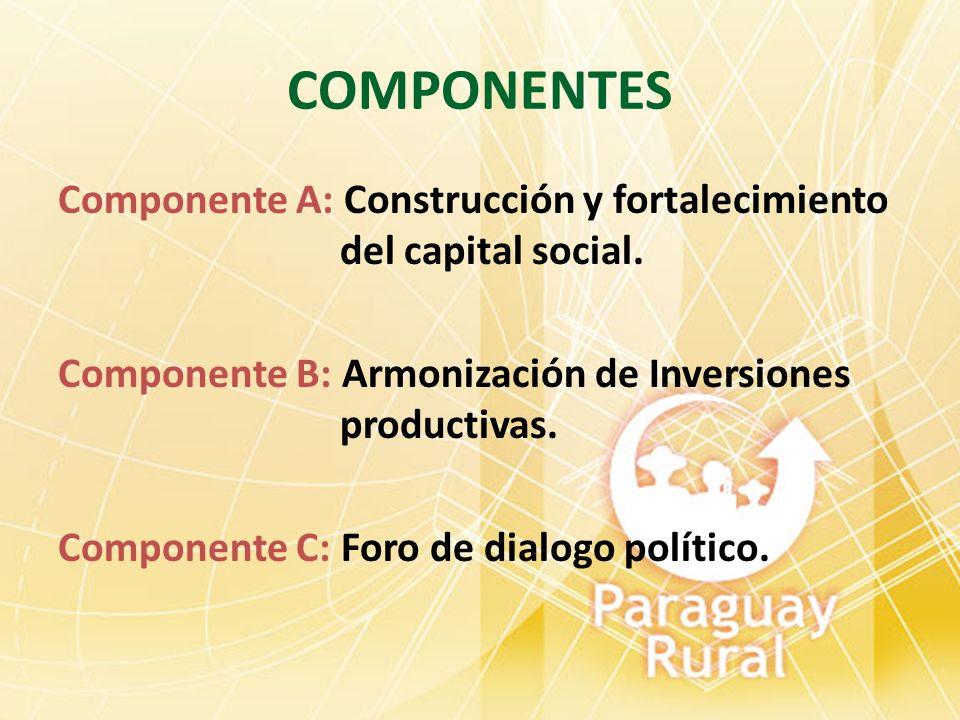 COMPONENTES Componente A: Construcción y fortalecimiento del capital social. Componente B: Armonización de Inversiones productivas. Componente C: Foro