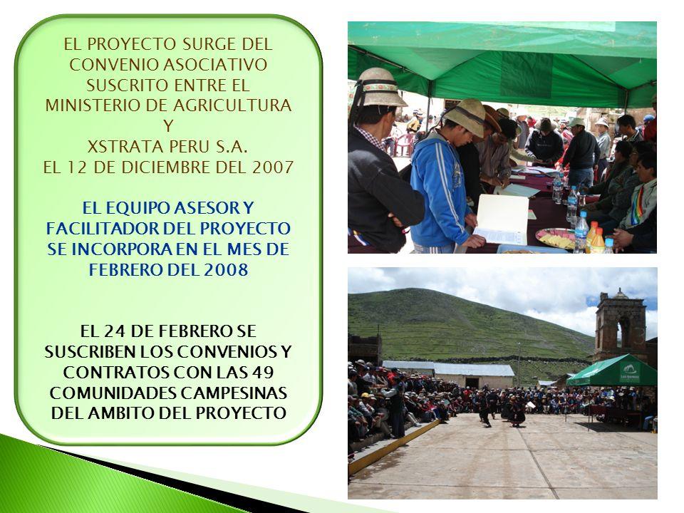 EL PROYECTO SURGE DEL CONVENIO ASOCIATIVO SUSCRITO ENTRE EL MINISTERIO DE AGRICULTURA Y XSTRATA PERU S.A. EL 12 DE DICIEMBRE DEL 2007 EL EQUIPO ASESOR