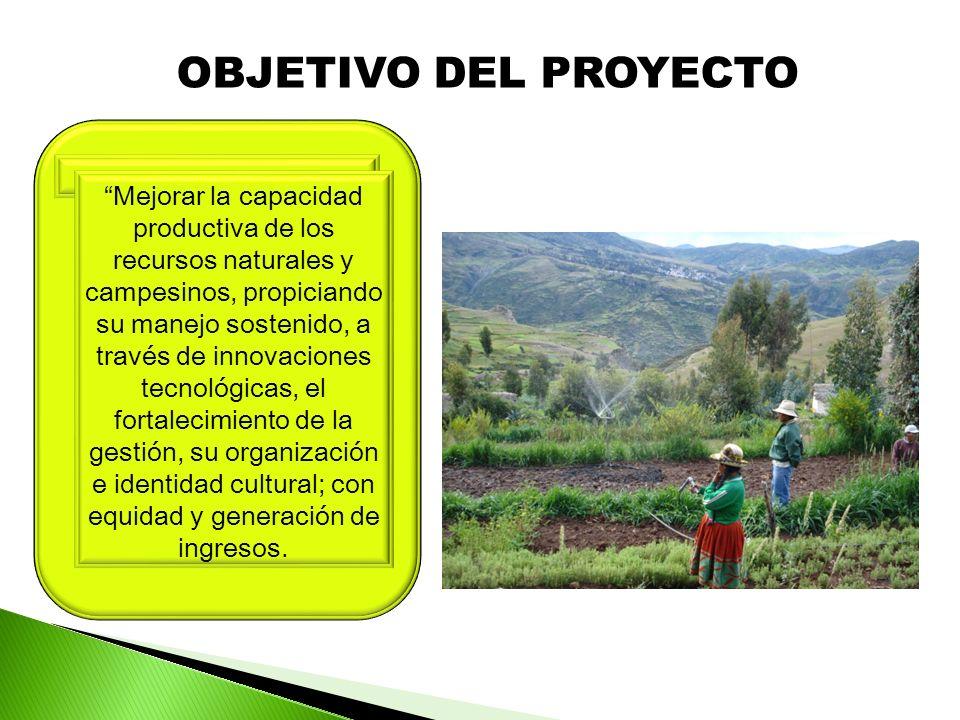 OBJETIVO DEL PROYECTO Mejorar la capacidad productiva de los recursos naturales y campesinos, propiciando su manejo sostenido, a través de innovaciones tecnológicas, el fortalecimiento de la gestión, su organización e identidad cultural; con equidad y generación de ingresos.