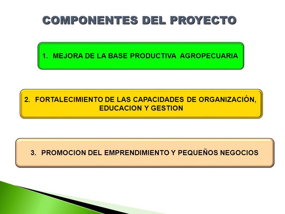 COMPONENTES DEL PROYECTO 1.MEJORA DE LA BASE PRODUCTIVA AGROPECUARIA 2.FORTALECIMIENTO DE LAS CAPACIDADES DE ORGANIZACIÓN, EDUCACION Y GESTION 3.PROMOCION DEL EMPRENDIMIENTO Y PEQUEÑOS NEGOCIOS