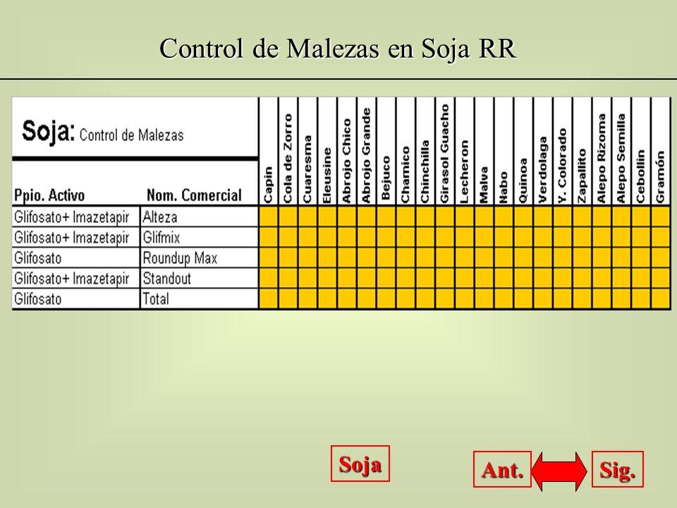 Control de Malezas en Soja RR Soja Sig. Ant.