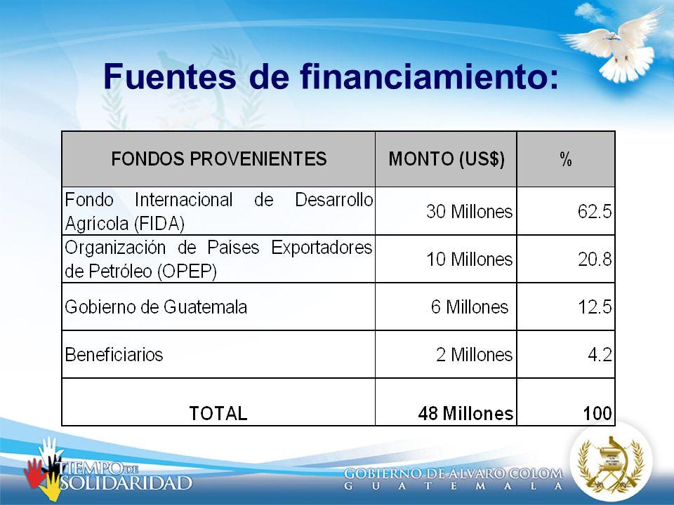 Fuentes de financiamiento: