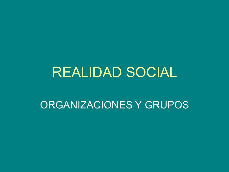 REALIDAD SOCIAL ORGANIZACIONES Y GRUPOS