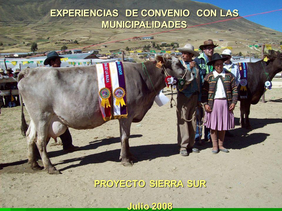 EXPERIENCIAS DE CONVENIO CON LAS MUNICIPALIDADES PROYECTO SIERRA SUR Julio 2008