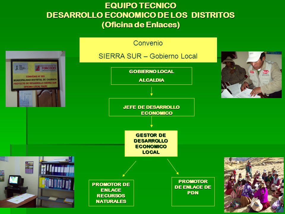 EQUIPO TECNICO DESARROLLO ECONOMICO DE LOS DISTRITOS (Oficina de Enlaces) JEFE DE DESARROLLO ECONOMICO GESTOR DE DESARROLLO ECONOMICO LOCAL PROMOTOR DE ENLACE RECURSOS NATURALES PROMOTOR DE ENLACE DE PDN GOBIERNO LOCAL ALCALDIA Convenio SIERRA SUR – Gobierno Local