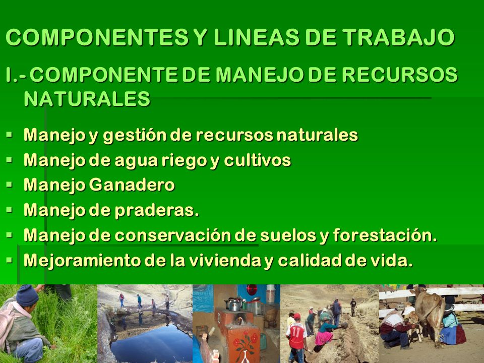 COMPONENTES Y LINEAS DE TRABAJO I.- COMPONENTE DE MANEJO DE RECURSOS NATURALES Manejo y gestión de recursos naturales Manejo y gestión de recursos nat