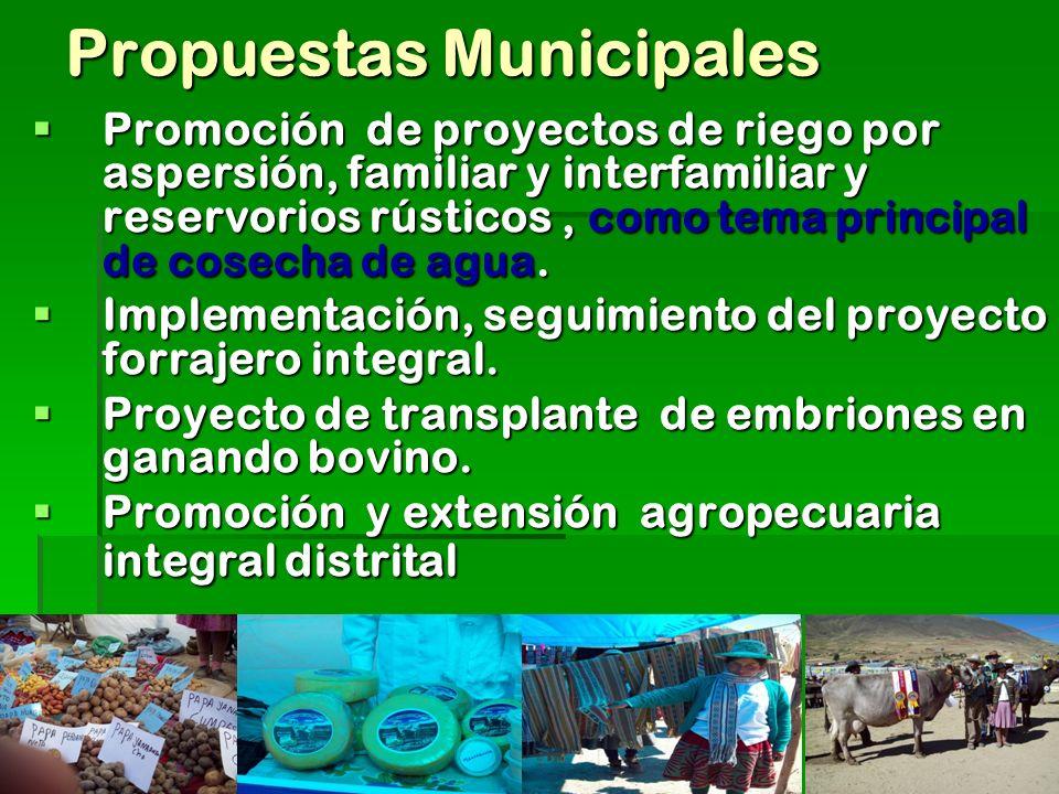 Propuestas Municipales Promoción de proyectos de riego por aspersión, familiar y interfamiliar y reservorios rústicos, como tema principal de cosecha