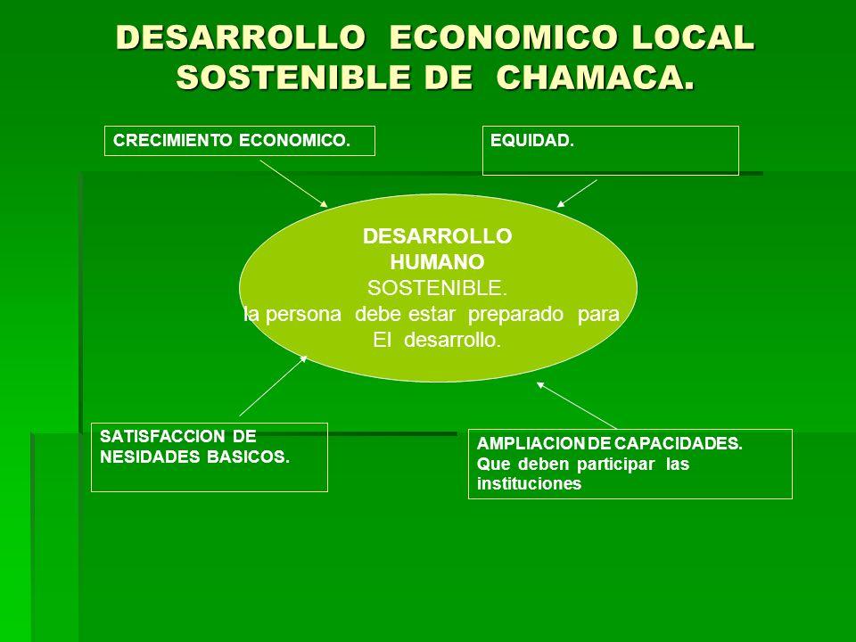 DESARROLLO ECONOMICO LOCAL SOSTENIBLE DE CHAMACA. CRECIMIENTO ECONOMICO.EQUIDAD. DESARROLLO HUMANO SOSTENIBLE. la persona debe estar preparado para El