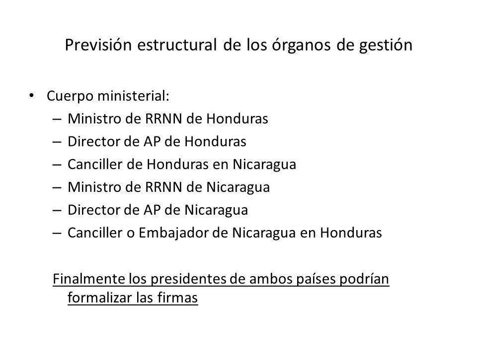 Previsión estructural de los órganos de gestión Cuerpo ministerial: – Ministro de RRNN de Honduras – Director de AP de Honduras – Canciller de Hondura