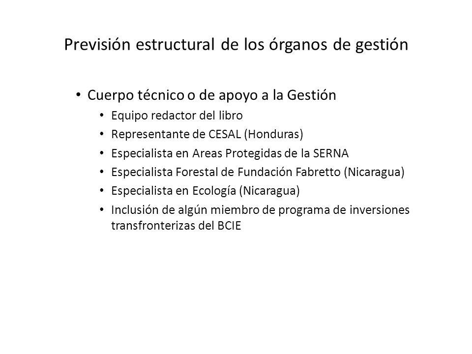 Previsión estructural de los órganos de gestión Cuerpo técnico o de apoyo a la Gestión Equipo redactor del libro Representante de CESAL (Honduras) Esp