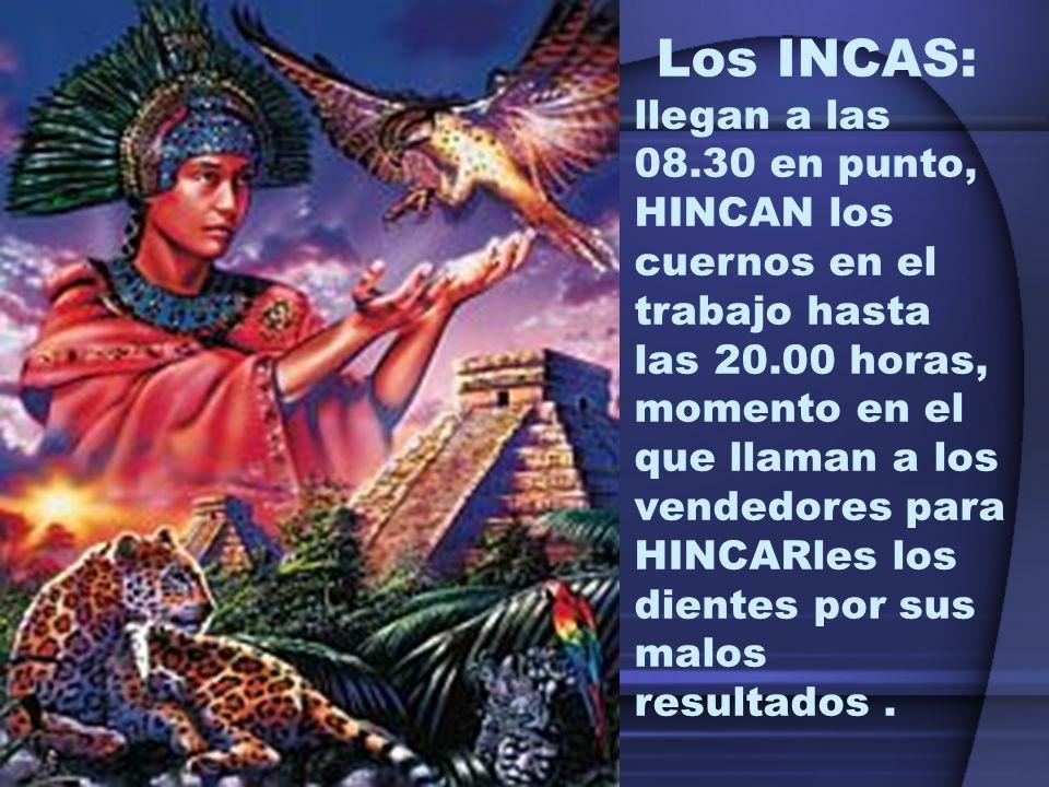 Los INCAS: llegan a las 08.30 en punto, HINCAN los cuernos en el trabajo hasta las 20.00 horas, momento en el que llaman a los vendedores para HINCARles los dientes por sus malos resultados.