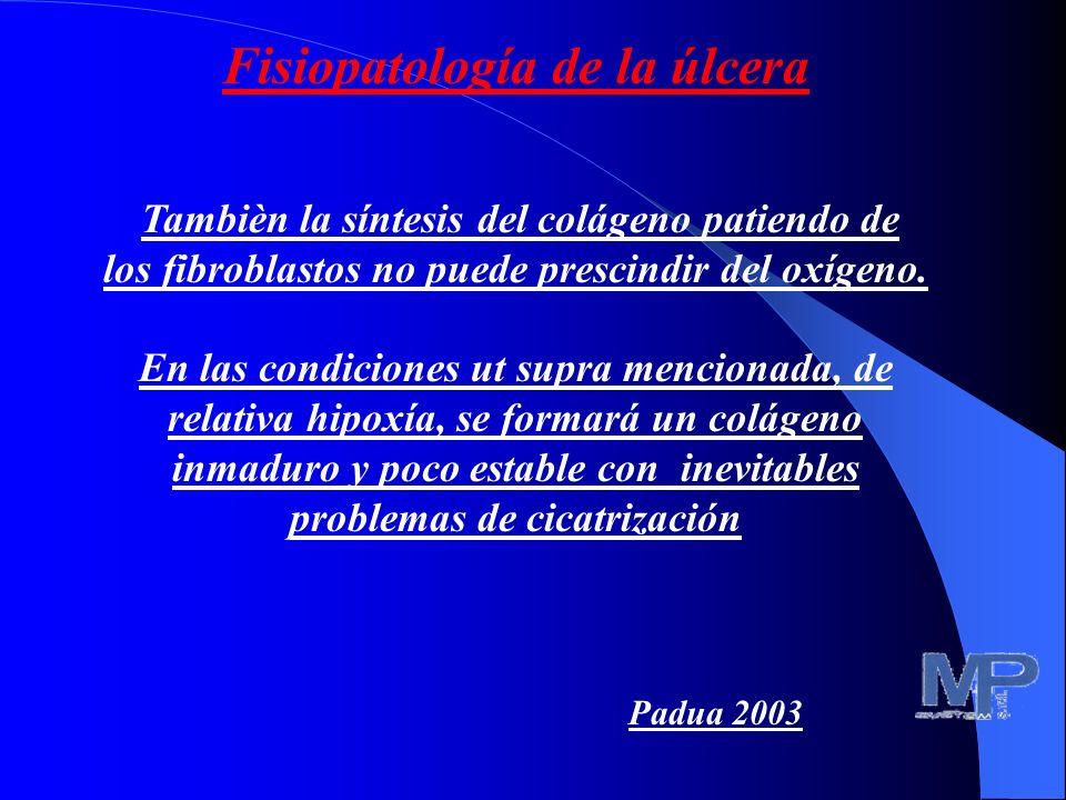 Fisiopatología de la úlcera Tambièn la síntesis del colágeno patiendo de los fibroblastos no puede prescindir del oxígeno.