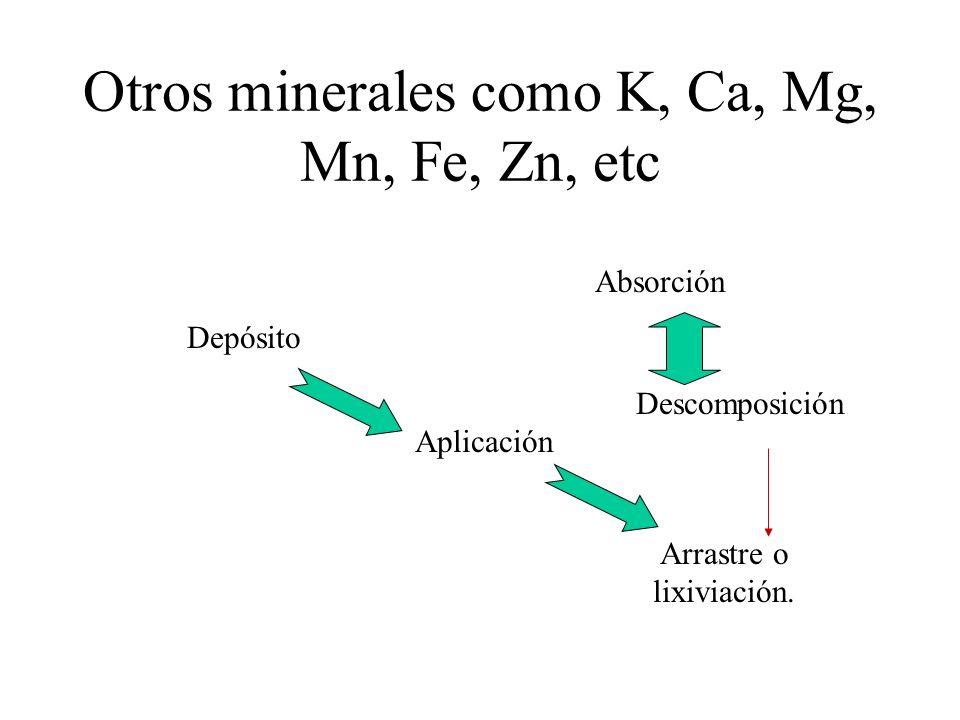 Otros minerales como K, Ca, Mg, Mn, Fe, Zn, etc Depósito Aplicación Arrastre o lixiviación. Absorción Descomposición