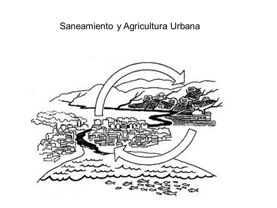 Saneamiento y Agricultura Urbana
