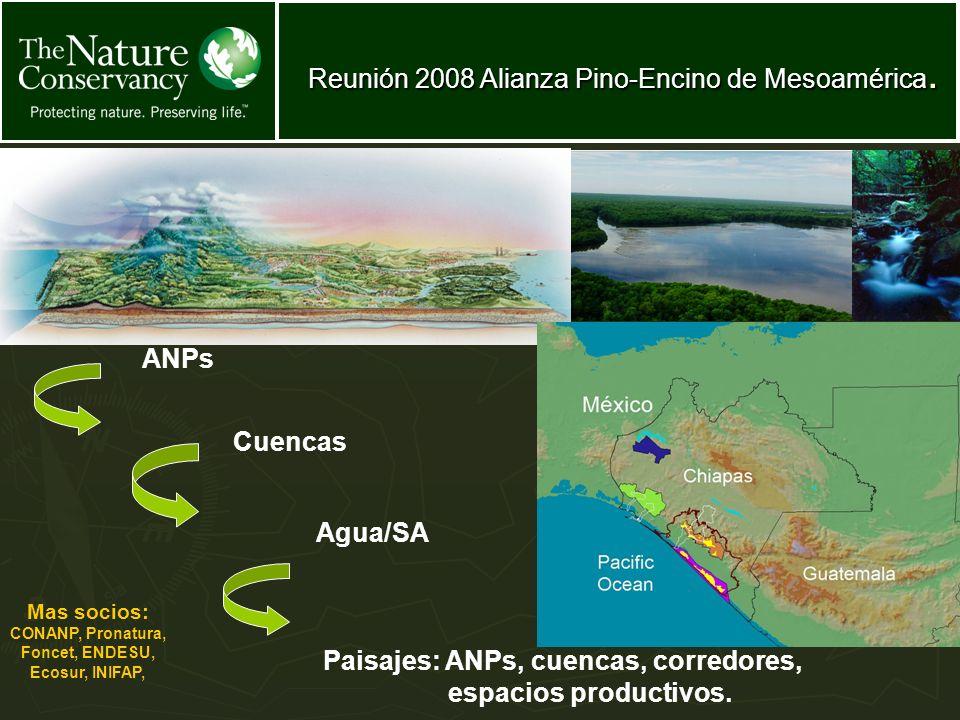 Areas Naturales Protegidas Cuencas Agua/SA ANPs Mas socios: CONANP, Pronatura, Foncet, ENDESU, Ecosur, INIFAP, Paisajes: ANPs, cuencas, corredores, es