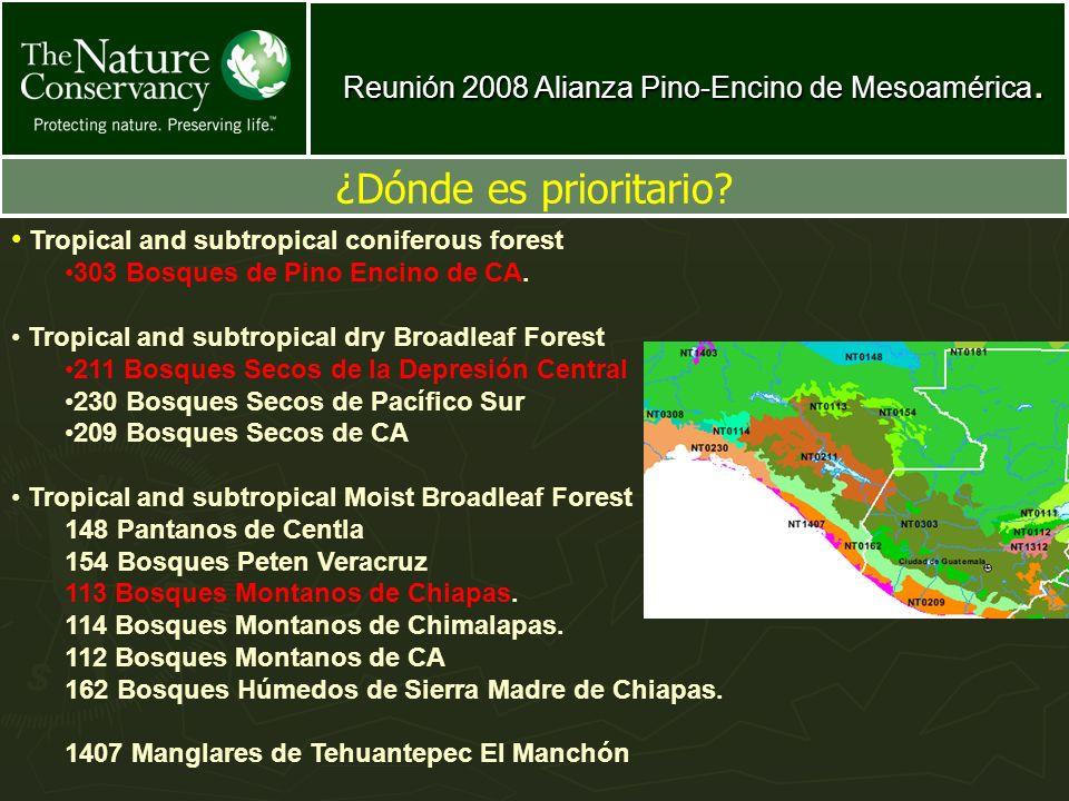 Reunión 2008 Alianza Pino-Encino de Mesoamérica. ¿Dónde es prioritario? Tropical and subtropical coniferous forest 303 Bosques de Pino Encino de CA. T