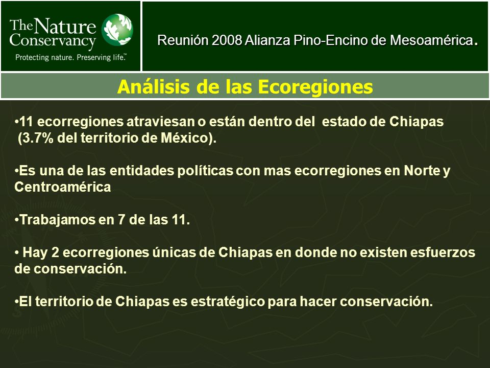 Reunión 2008 Alianza Pino-Encino de Mesoamérica. Análisis de las Ecoregiones 11 ecorregiones atraviesan o están dentro del estado de Chiapas (3.7% del
