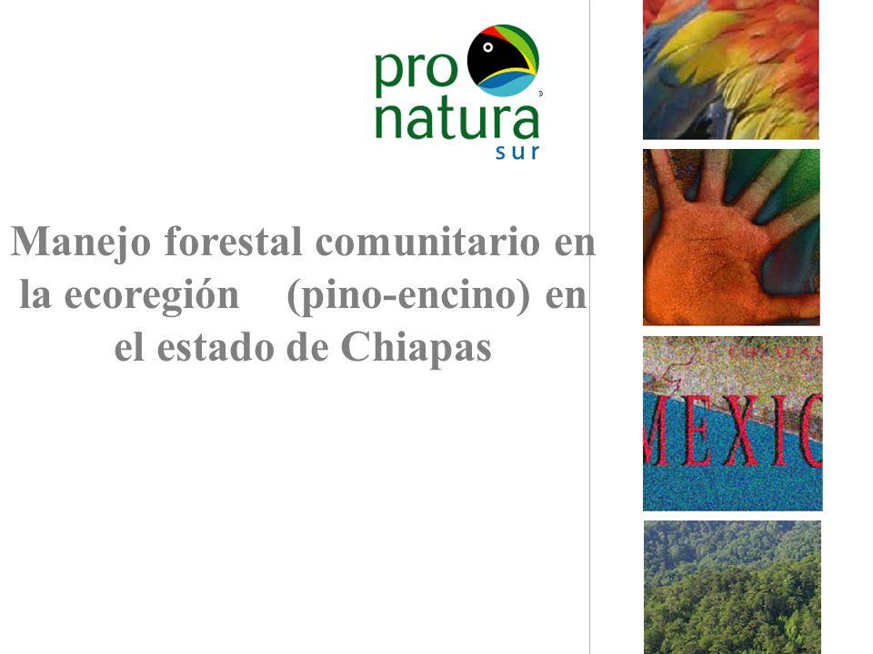 Manejo forestal comunitario en la ecoregión (pino-encino) en el estado de Chiapas