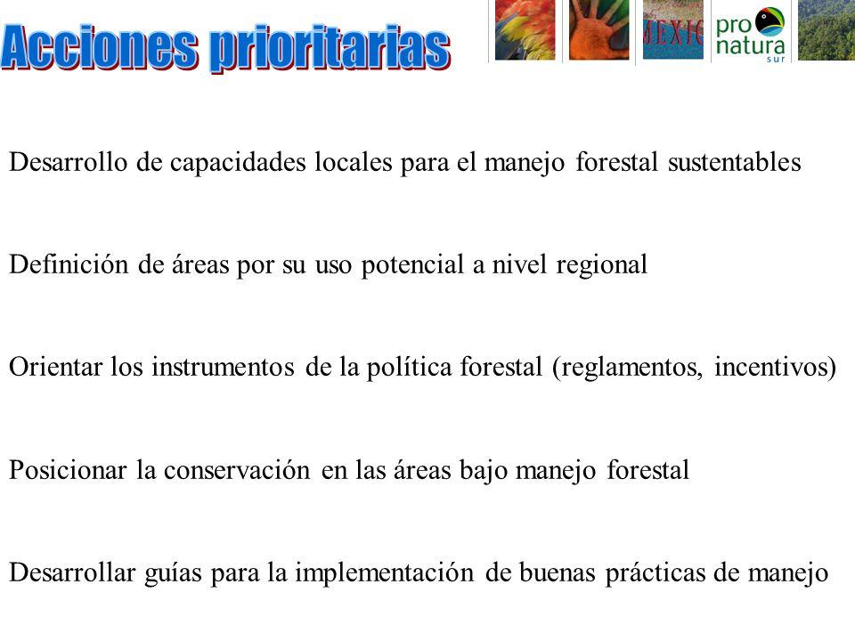 Desarrollo de capacidades locales para el manejo forestal sustentables Definición de áreas por su uso potencial a nivel regional Orientar los instrumentos de la política forestal (reglamentos, incentivos) Posicionar la conservación en las áreas bajo manejo forestal Desarrollar guías para la implementación de buenas prácticas de manejo