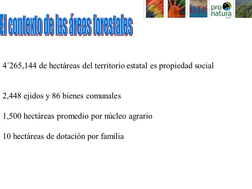 4´265,144 de hectáreas del territorio estatal es propiedad social 2,448 ejidos y 86 bienes comunales 1,500 hectáreas promedio por núcleo agrario 10 hectáreas de dotación por familia