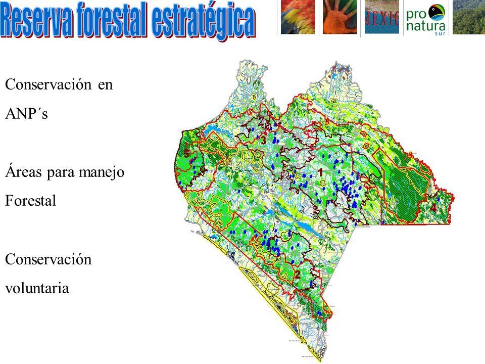 Conservación en ANP´s Áreas para manejo Forestal Conservación voluntaria