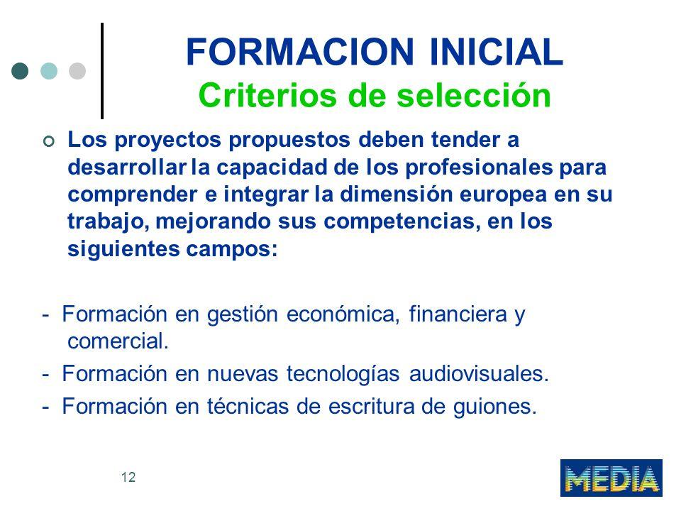 12 FORMACION INICIAL Criterios de selección Los proyectos propuestos deben tender a desarrollar la capacidad de los profesionales para comprender e integrar la dimensión europea en su trabajo, mejorando sus competencias, en los siguientes campos: - Formación en gestión económica, financiera y comercial.