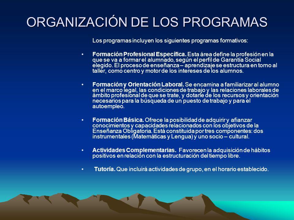 ORGANIZACIÓN DE LOS PROGRAMAS Los programas incluyen los siguientes programas formativos: Formación Profesional Específica.