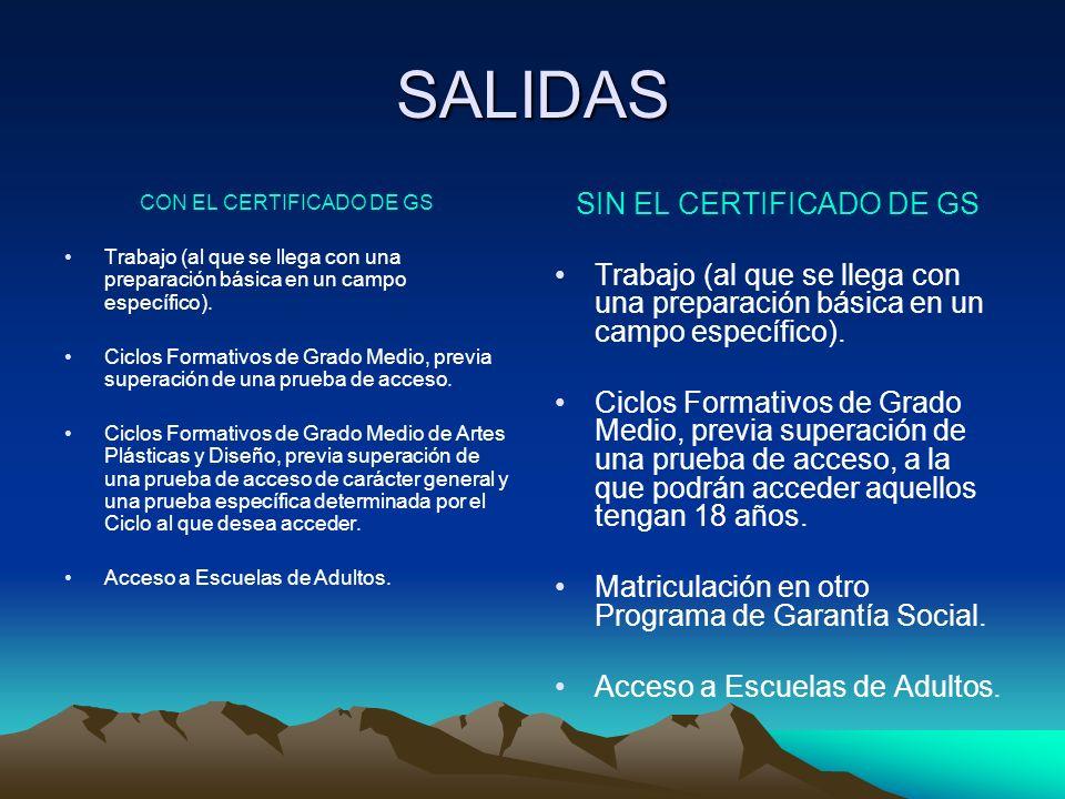 SALIDAS CON EL CERTIFICADO DE GS Trabajo (al que se llega con una preparación básica en un campo específico).