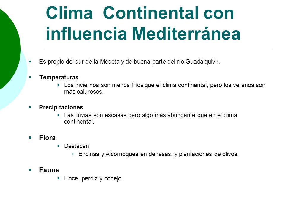 Clima Continental con influencia Mediterránea Es propio del sur de la Meseta y de buena parte del río Guadalquivir. Temperaturas Los inviernos son men