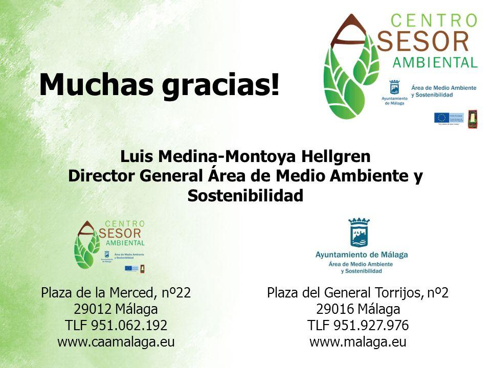 Muchas gracias! Plaza del General Torrijos, nº2 29016 Málaga TLF 951.927.976 www.malaga.eu Plaza de la Merced, nº22 29012 Málaga TLF 951.062.192 www.c