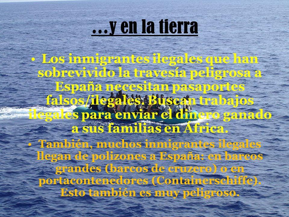 …y en la tierra Los inmigrantes ilegales que han sobrevivido la travesía peligrosa a Espa ñ a necesitan pasaportes falsos/ilegales.