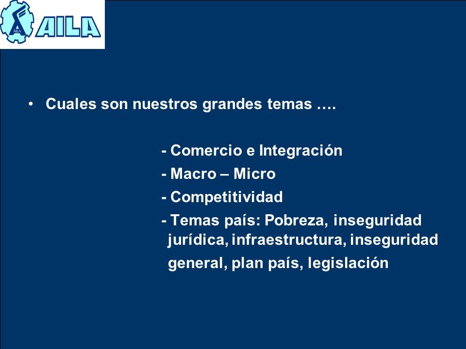 Cuales son nuestros grandes temas …. - Comercio e Integración - Macro – Micro - Competitividad - Temas país: Pobreza, inseguridad jurídica, infraestru