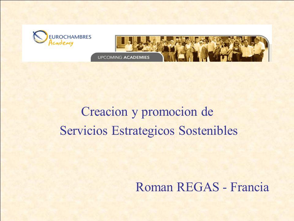 Creacion y promocion de Servicios Estrategicos Sostenibles Roman REGAS - Francia