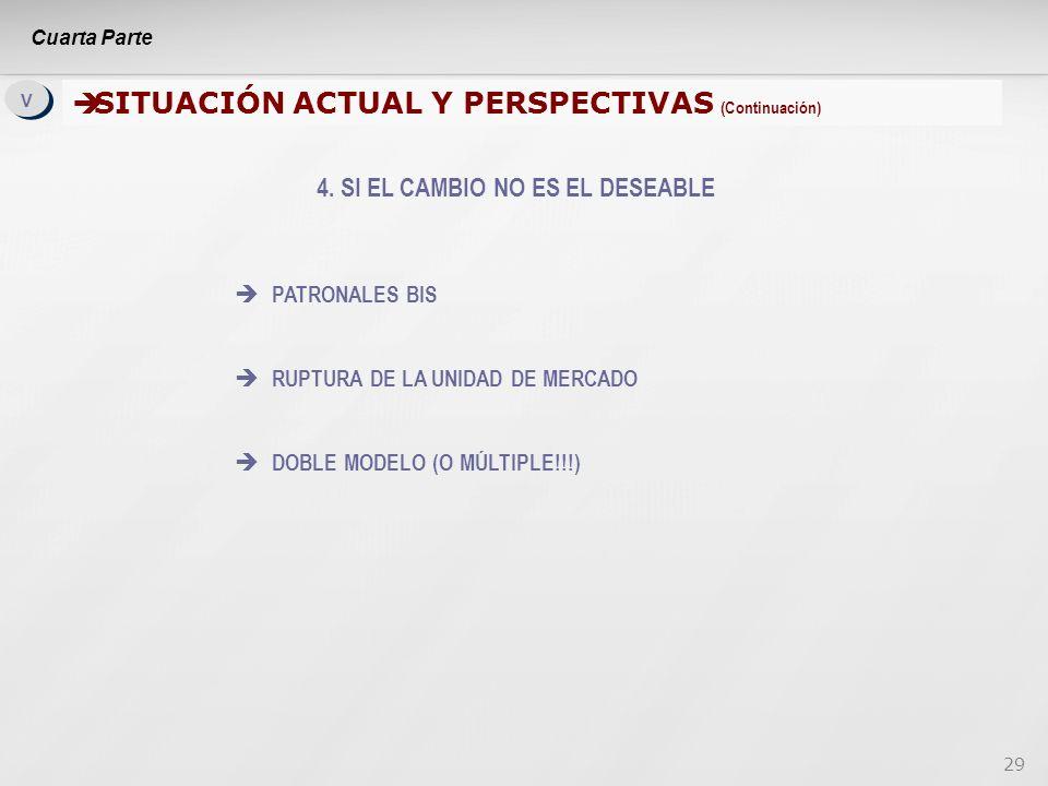 29 V V SITUACIÓN ACTUAL Y PERSPECTIVAS (Continuación) SITUACIÓN ACTUAL Y PERSPECTIVAS (Continuación) 4.