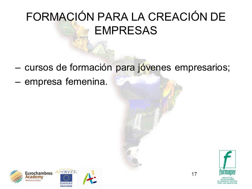 17 FORMACIÓN PARA LA CREACIÓN DE EMPRESAS –cursos de formación para jóvenes empresarios; –empresa femenina.