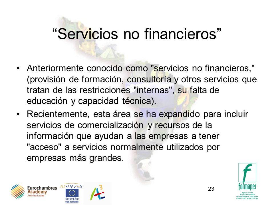 23 Servicios no financieros Anteriormente conocido como servicios no financieros, (provisión de formación, consultoría y otros servicios que tratan de las restricciones internas , su falta de educación y capacidad técnica).