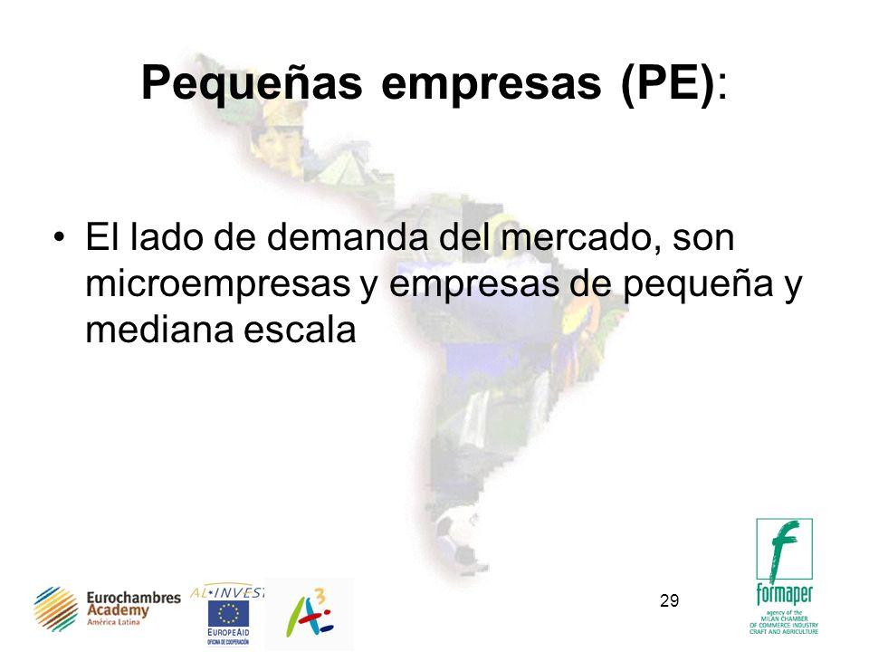 29 Pequeñas empresas (PE): El lado de demanda del mercado, son microempresas y empresas de pequeña y mediana escala