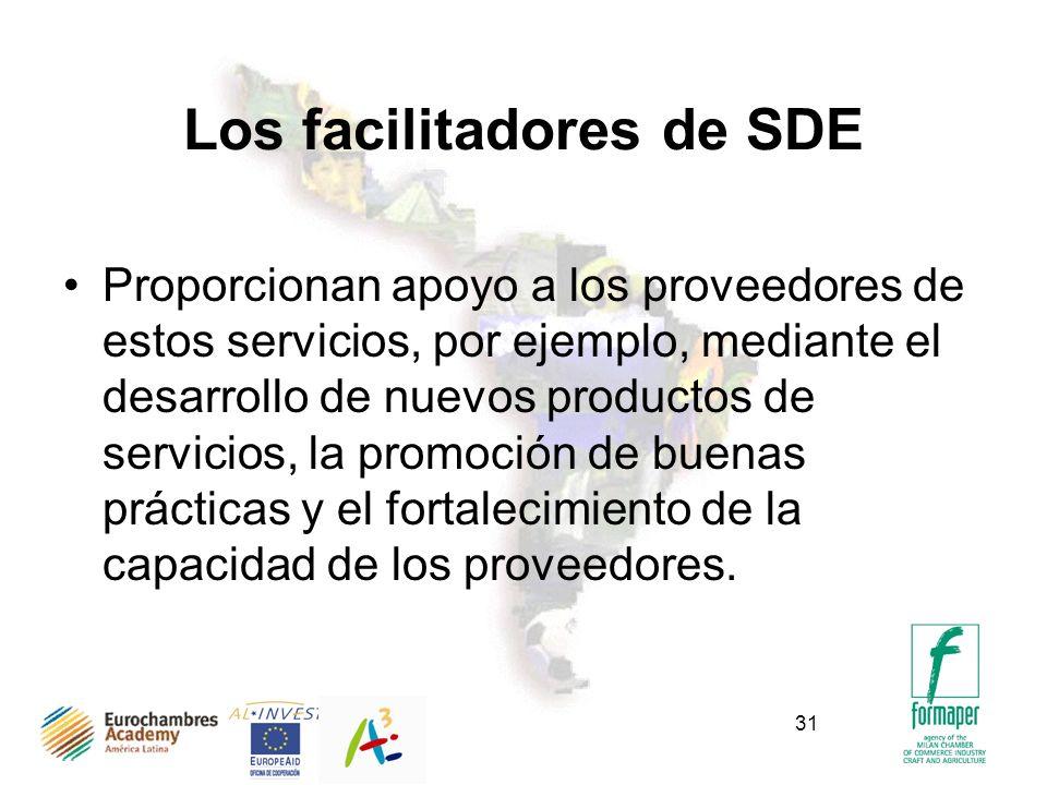 31 Los facilitadores de SDE Proporcionan apoyo a los proveedores de estos servicios, por ejemplo, mediante el desarrollo de nuevos productos de servicios, la promoción de buenas prácticas y el fortalecimiento de la capacidad de los proveedores.