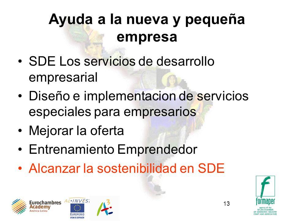 13 Ayuda a la nueva y pequeña empresa SDE Los servicios de desarrollo empresarial Diseño e implementacion de servicios especiales para empresarios Mejorar la oferta Entrenamiento Emprendedor Alcanzar la sostenibilidad en SDE