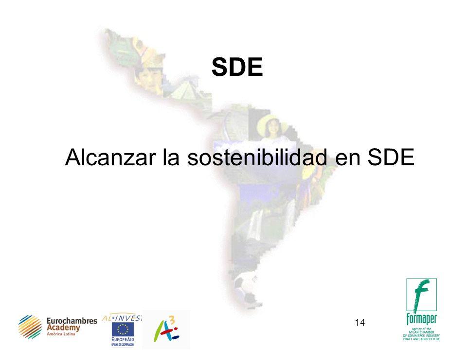14 SDE Alcanzar la sostenibilidad en SDE
