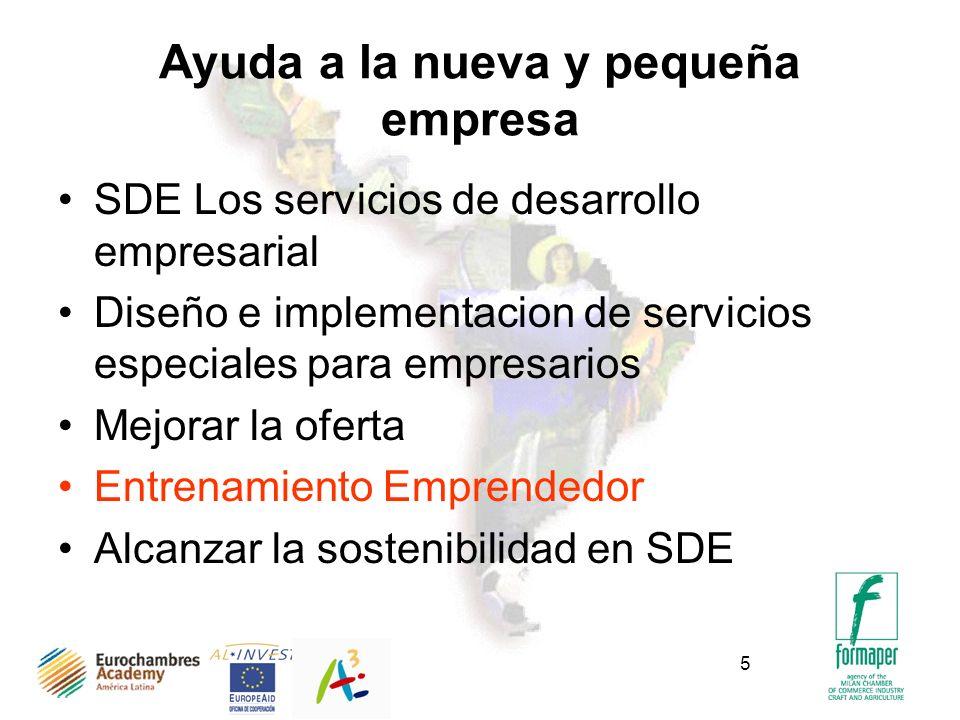 5 Ayuda a la nueva y pequeña empresa SDE Los servicios de desarrollo empresarial Diseño e implementacion de servicios especiales para empresarios Mejorar la oferta Entrenamiento Emprendedor Alcanzar la sostenibilidad en SDE