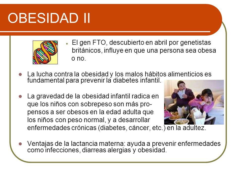 OBESIDAD II El gen FTO, descubierto en abril por genetistas británicos, influye en que una persona sea obesa o no. La lucha contra la obesidad y los m