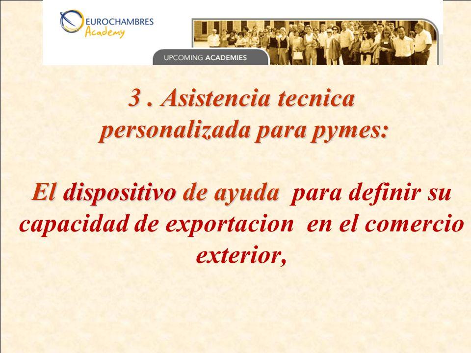 3. Asistencia tecnica personalizada para pymes: El dispositivo de ayuda 3.