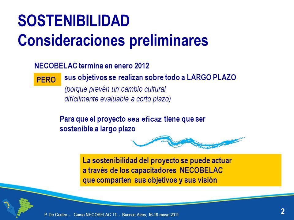 SOSTENIBILIDAD Consideraciones preliminares P. De Castro - Curso NECOBELAC T1.